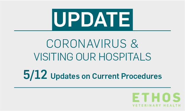 COVID-19 precautions at Ethos Veterinary Health hospitals